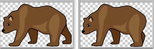 Examples of the bear images you will be using.