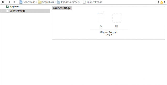Setting the launch image in the Xcode project settings