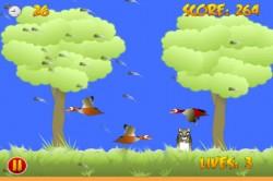 Bird Blasting By Mike Traverso
