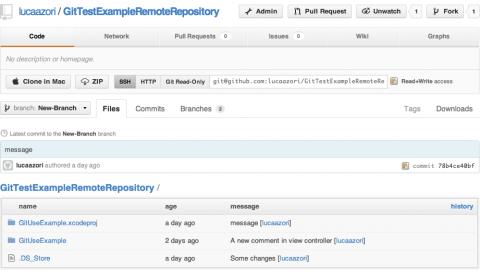 Remote Repo On GitHub