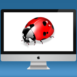 It's time to show these Scary Bugs in a Mac Application!