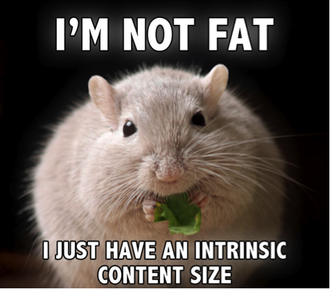 I am not fat