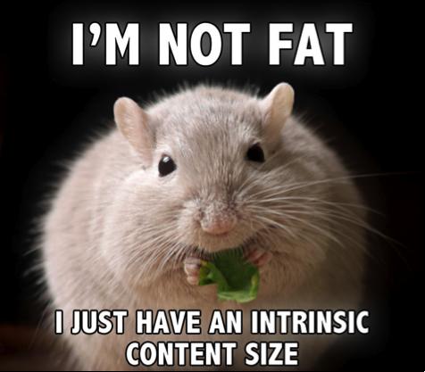Am Not Fat 58
