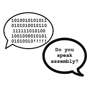 Do you speak assembly?