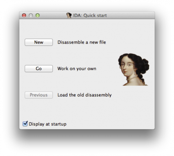 IDA Startup