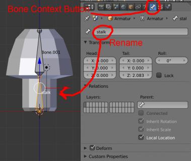 bone_context