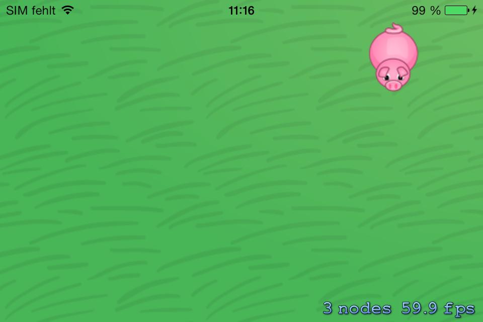 Bouncing_Pig