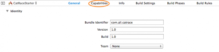 Select the capabilities tab