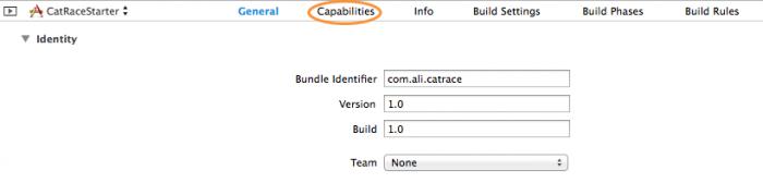 Select the capabilities tab