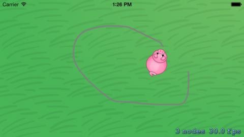 A rotating pig