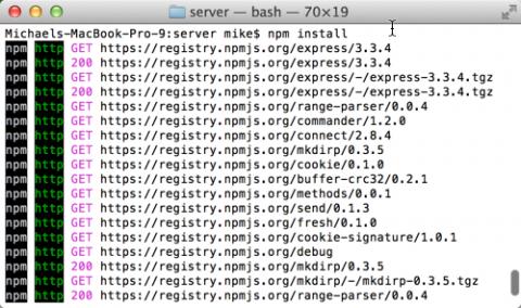 npm_install