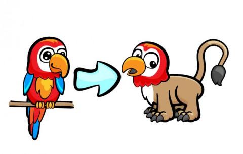 parrot_lion