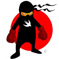 Are you a Swift Ninja?