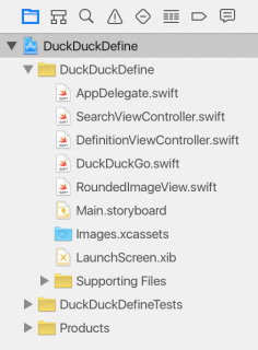Project Navigator showing the DuckDuckDefine starter project
