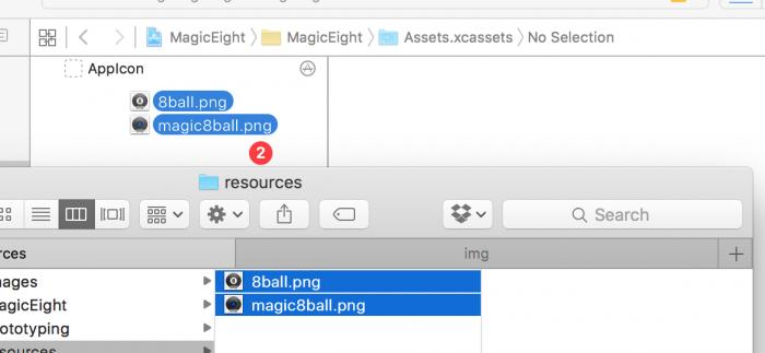 37_drag_asset_catalog