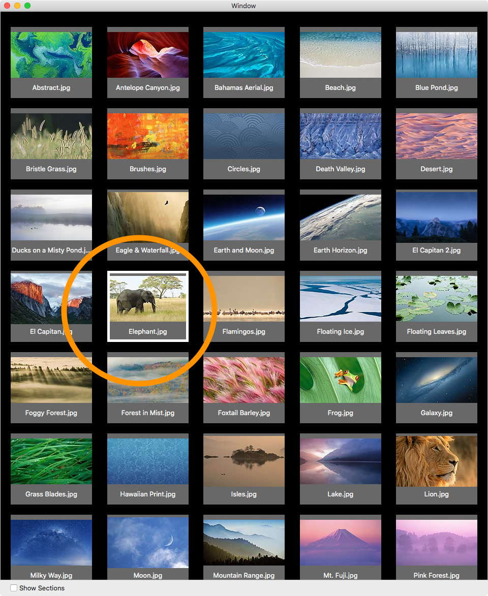 Collection Views in OS X Tutorial | raywenderlich com