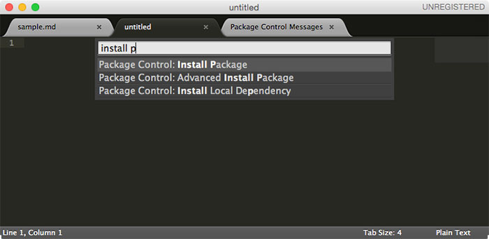 Enter Install Package into Command Pallet