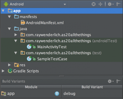 Project View: All Test Artifacts Enabled