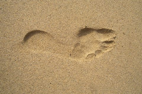 footprint-1345564_640