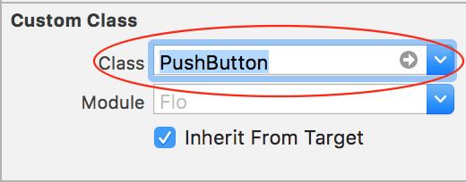 custom class push button