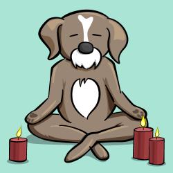 Yoga Tutorial: Using a Cross-Platform Layout Engine