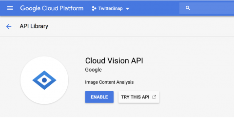 Cloud Vision API