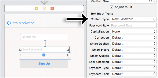 Interface Builder: New iOS Password and Password Rule fields