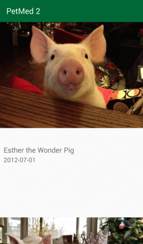 Pet list screen