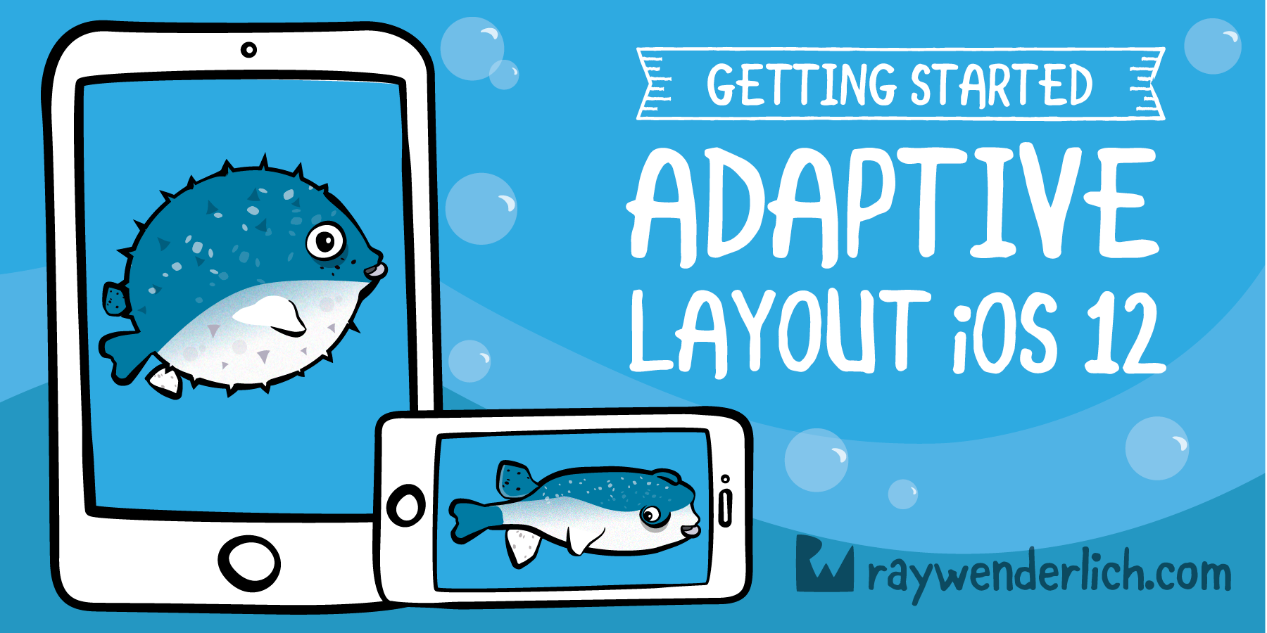 QnA VBage Adaptive Layout Tutorial in iOS 12: Getting Started [FREE]