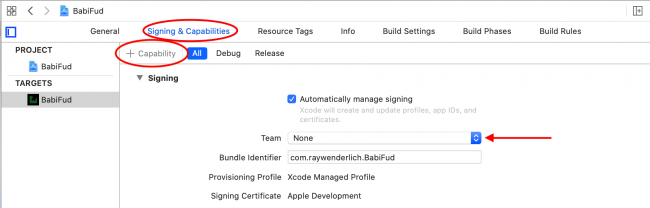 Adding CloudKit capability in Xcode 11