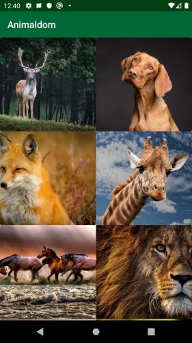 Animaldom app