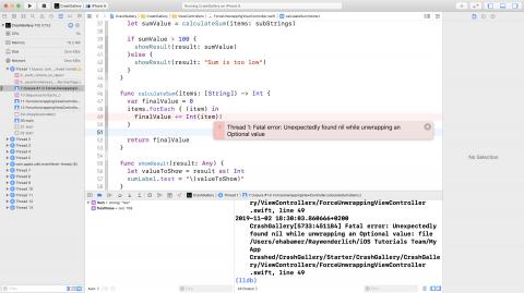 App crashed in calculateSum(items:)