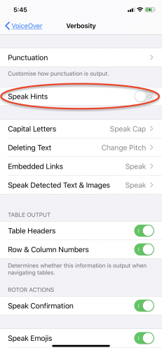 iPhone Settings with Speak-Hints turned off