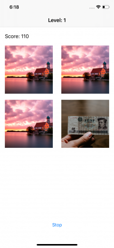 First run of FindOrLose with four images