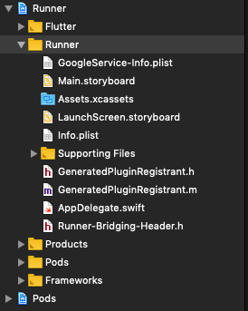 Google.Service-Info.plist added directly under the Runner Folder.