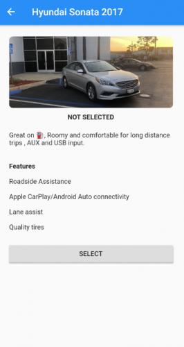 Car details screen