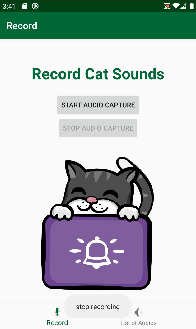 Stop Audio Capture Toast