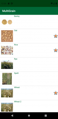 Android Grain List with Favorites