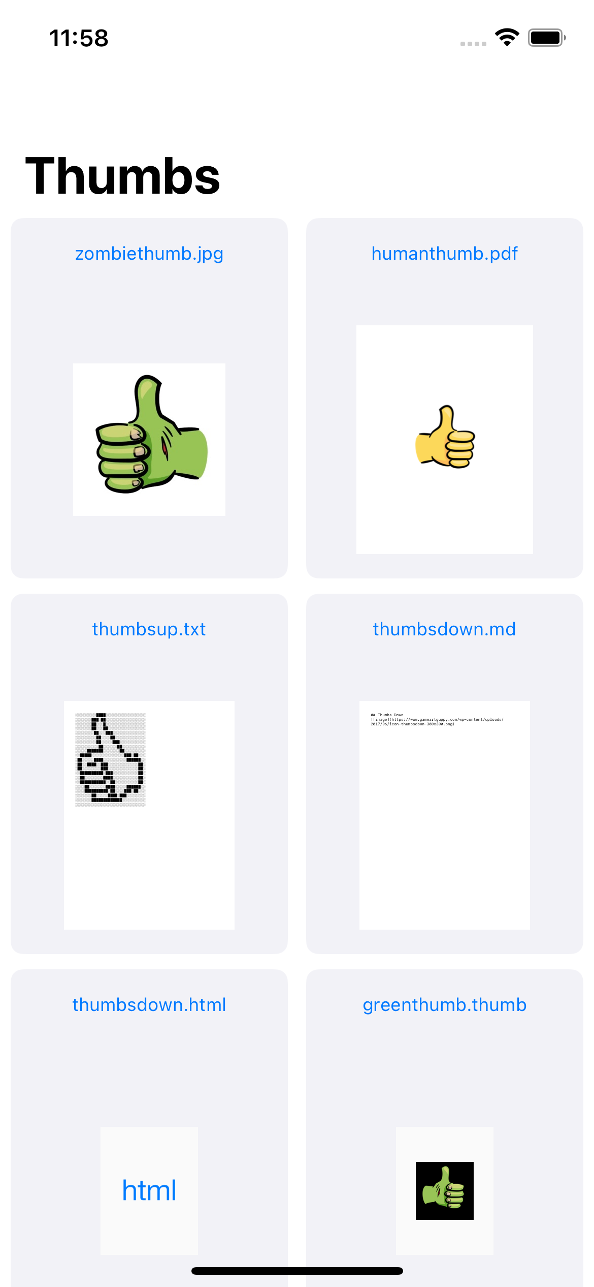 The RazeThumb app home screen now showing the RazeThumb app icon as a thumbnail for .thumb documents