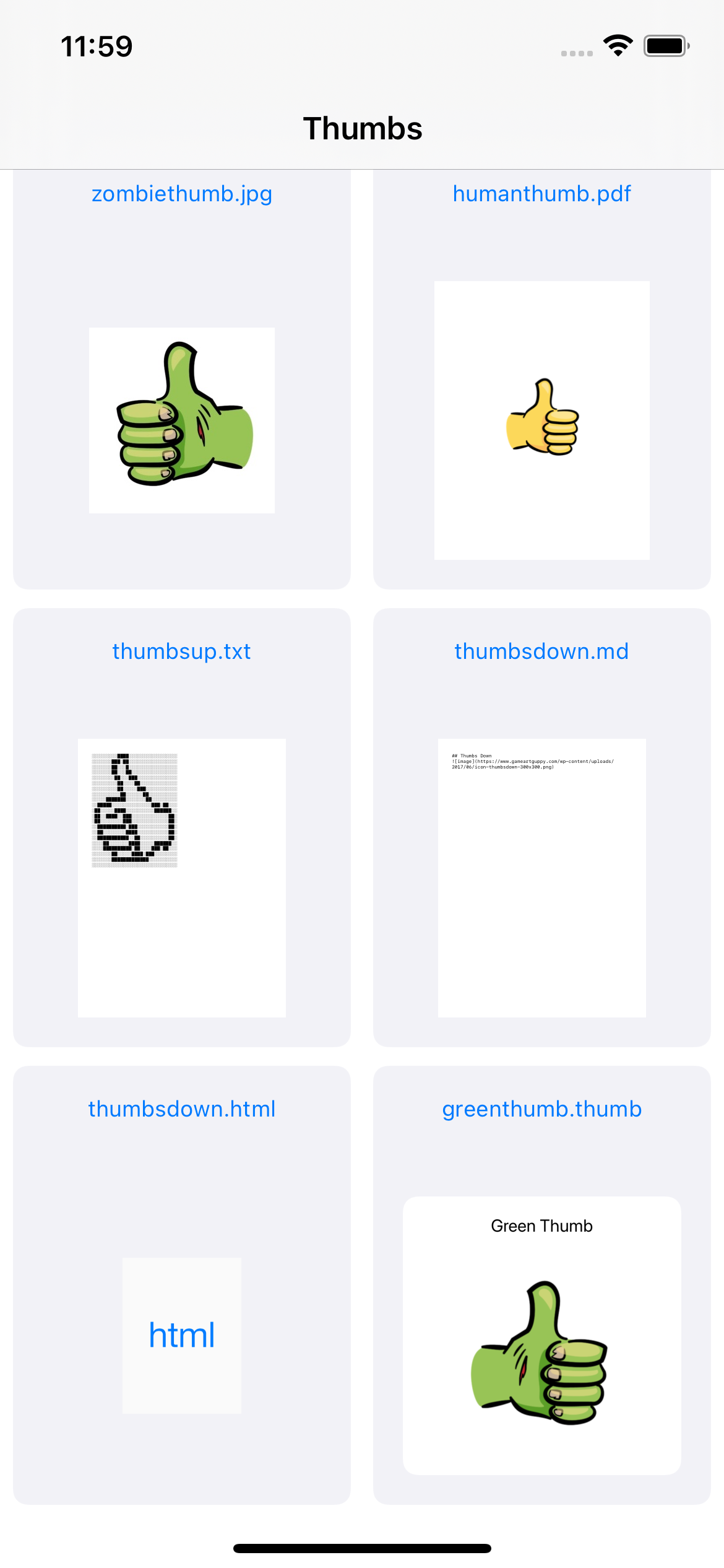 The RazeThumb app home screen now showing the the contents of a custom .thumb file as the rendered thumbnail icon