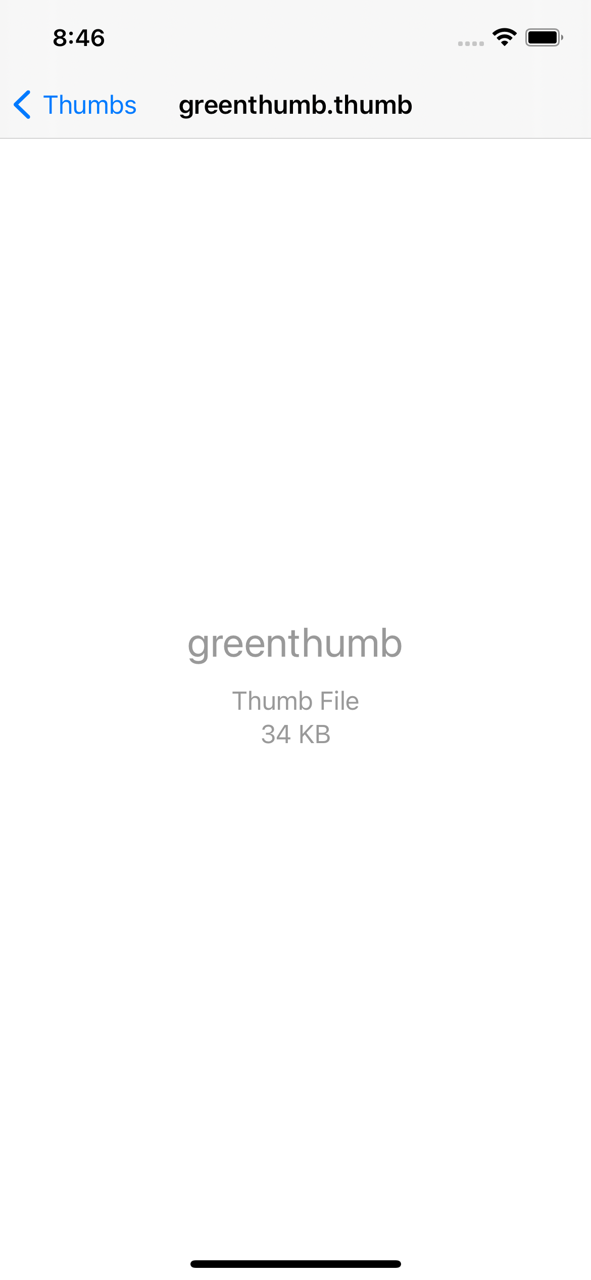 A screenshot of RazeThumb displaying the default preview of the custom .thumb file which consists of just the name of the Document Type and it's size
