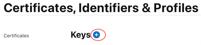 Screenshot showing the 'Keys' heading of the Certificates, Identifiers, & Profiles page, with the + button next to the heading circled in red