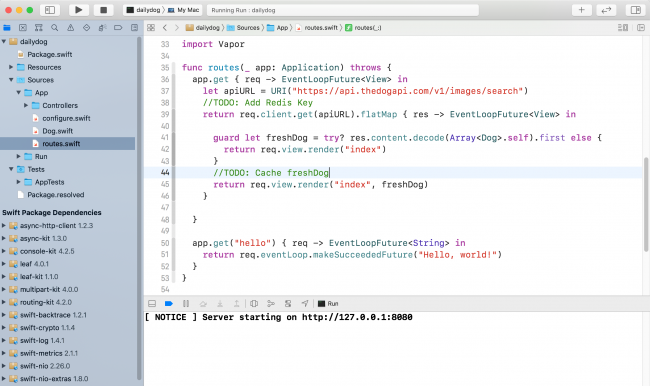 Xcode window with the starter project