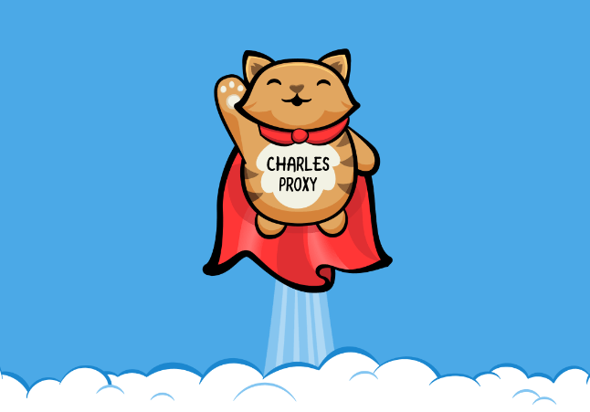 Superhero tabby cat with Charles Proxy written on his tummy soaring to greatness