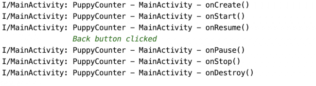 Logs showing full activity lifecycle