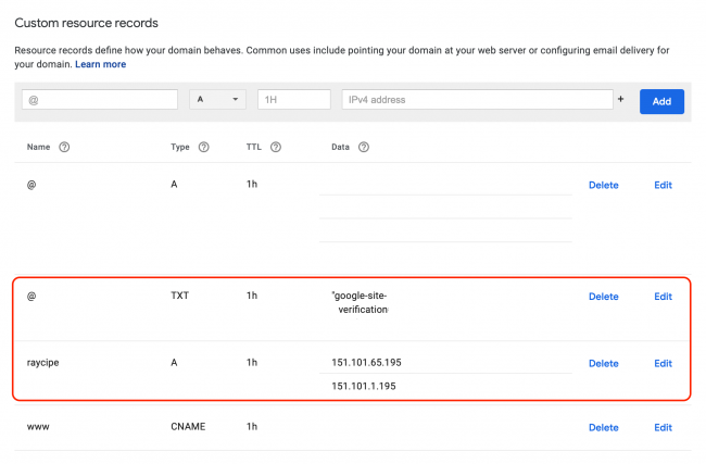 Google DNS records setting showing TXT and A records added