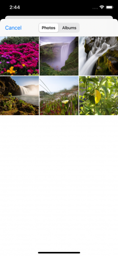 A grid view with pictures from the user's library.