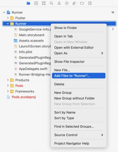 Adding files to Runner