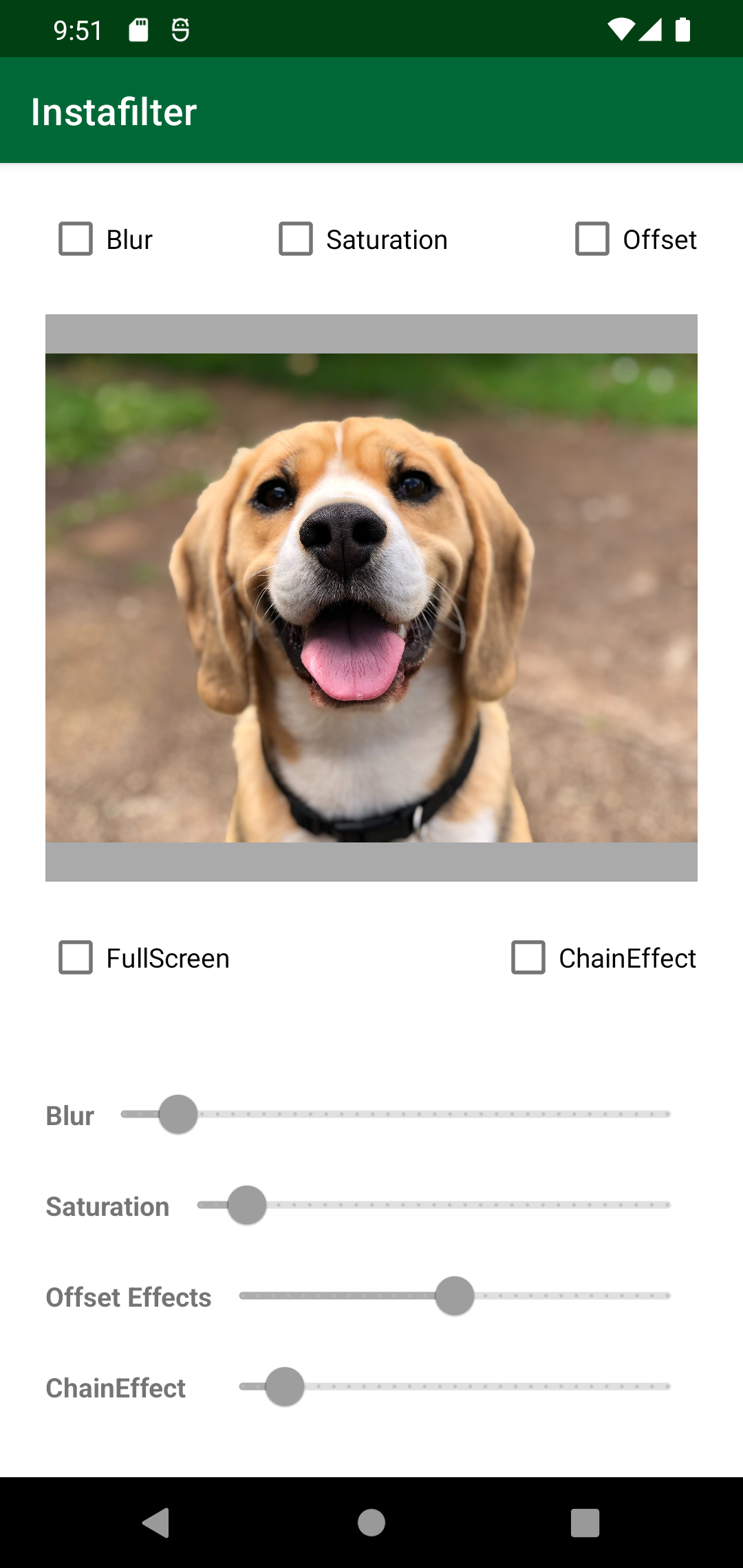 Instafilter app with dog photo and various checkboxes and slider bars