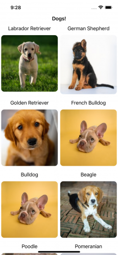 DogLife app with different pictures for the different dog breeds